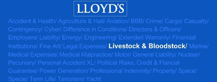 bloodstock insurance
